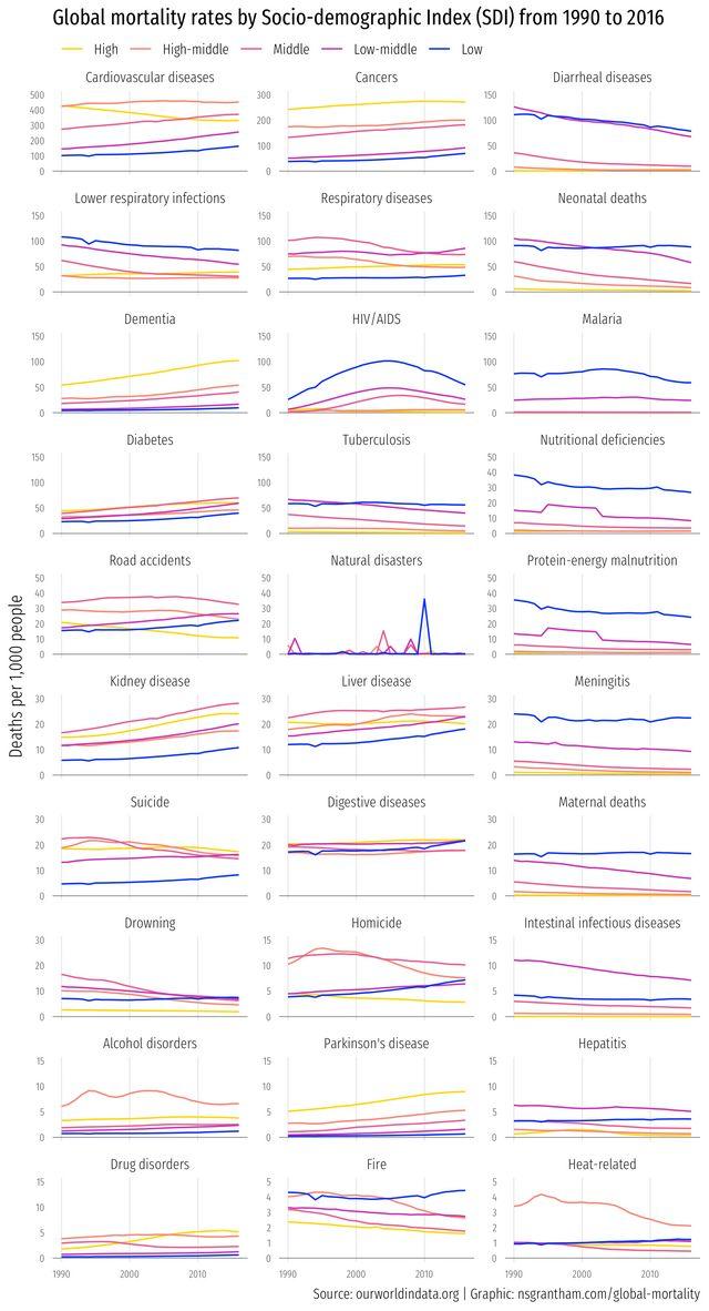 Global Mortality Rates